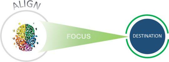 Align_Focus_Target_1
